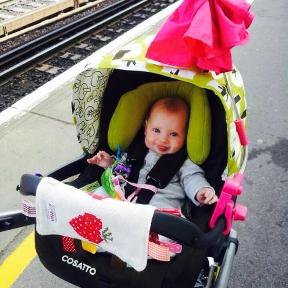 Bella on Train