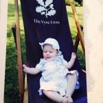 The Vyne Deck Chair