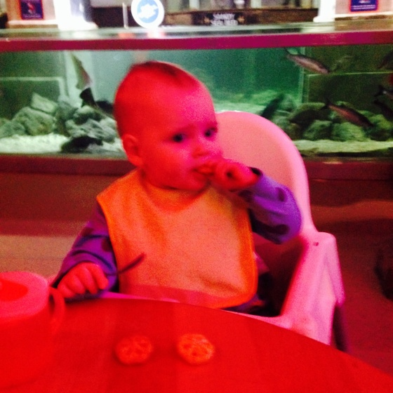 Eating at Sealife
