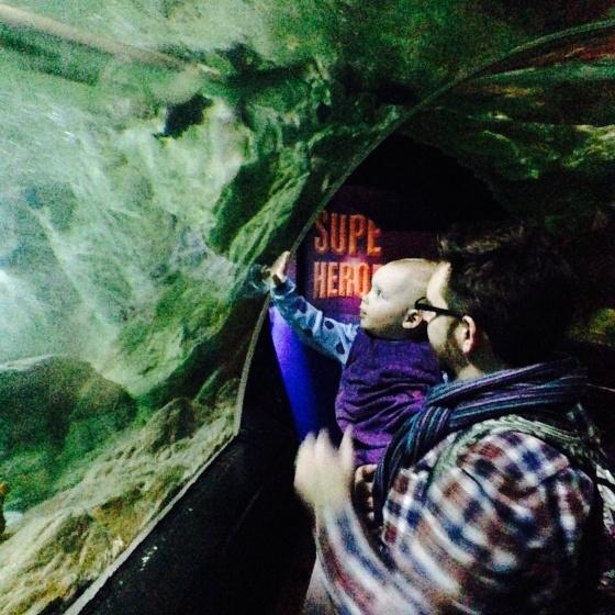 Ocean Tunnel