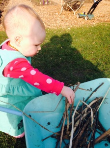 Putting sticks in my wheelbarrow
