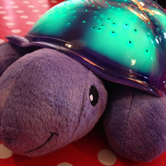 Twilight Turtle Head