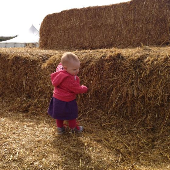 Giant haystack