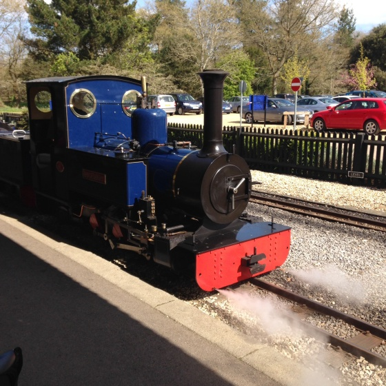 Steam Train at Exbury Gardens