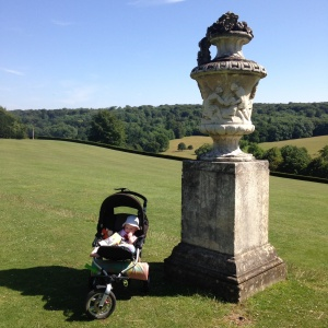 Polesden Lacey views