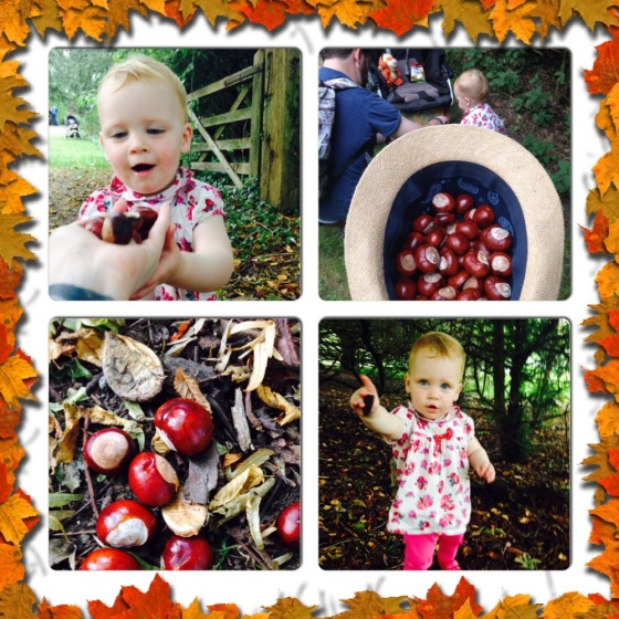 Bonkers for conkers
