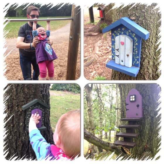 Enchanted forest at Wellington Country Park