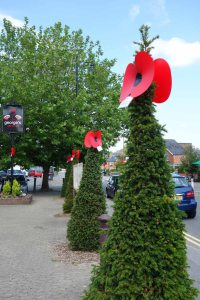 3-Paper poppies in the village square