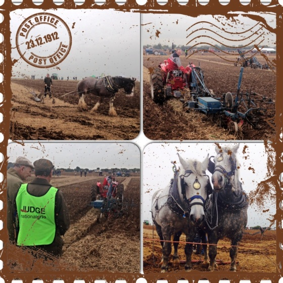 The National Ploughing Championship 2014