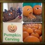 Pumpkins at Manydown