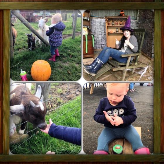 Manydown Farm Halloween