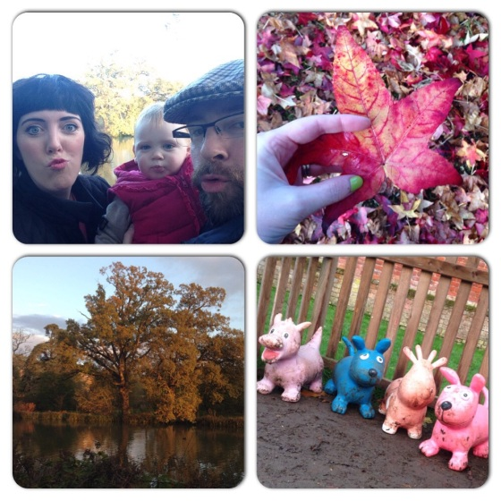My weekend in pictures 4