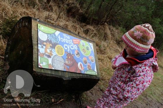 The Gruffalo Trail Moors valley 5