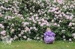 Exbury-Gardens-4
