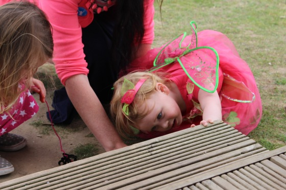 Fairy and Pixie Party at Wellington Country Park