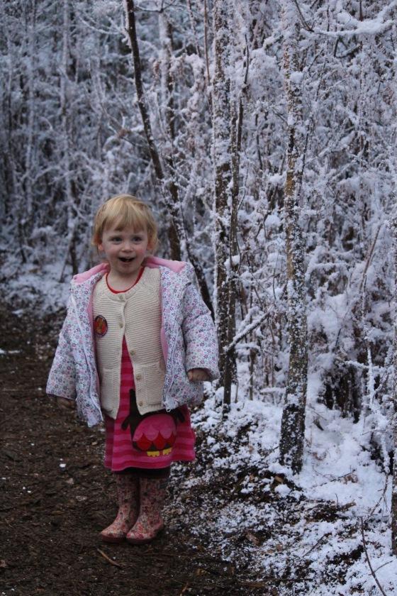 LaplandUK woods