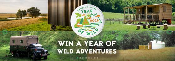Year of Wild