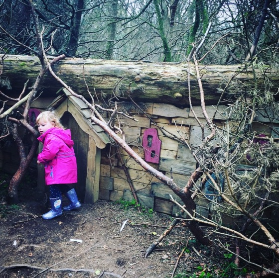 The Giants Lair at Slieve Gullion Forest Park