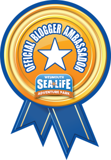 SEALIFE Blog Ambassador