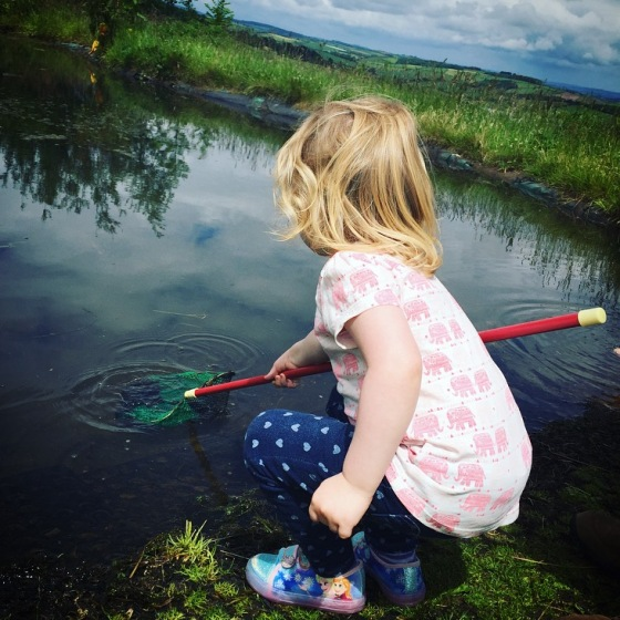 Pond dipping at Pennywell Farm