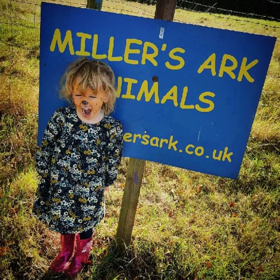 Millers Ark, Hampshire Review