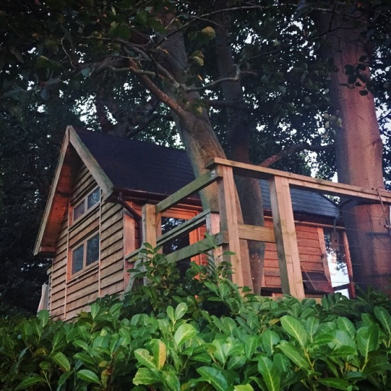 Our Treehouse Adventure Uplands Treehouse Review Somerset Dear