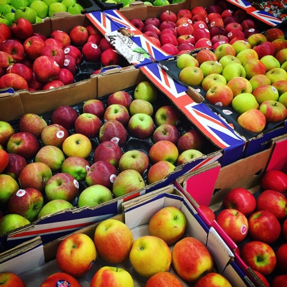 Apples Galore!