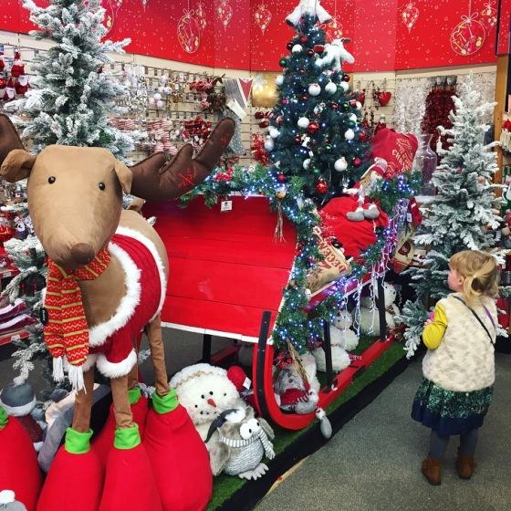 Haskins Christmas Decorations