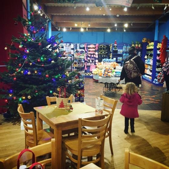Christmas at Weymouth SEALIFE