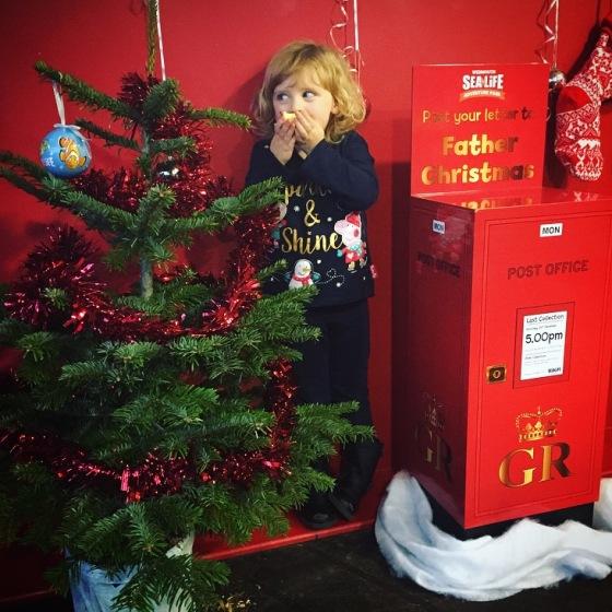 Christmas at SEALIFE Weymouth