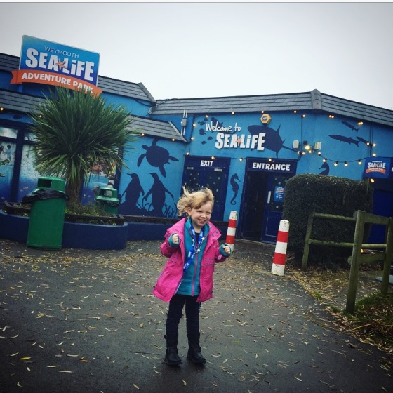 Christmas at Weymouth SEALIFE Adventure Park