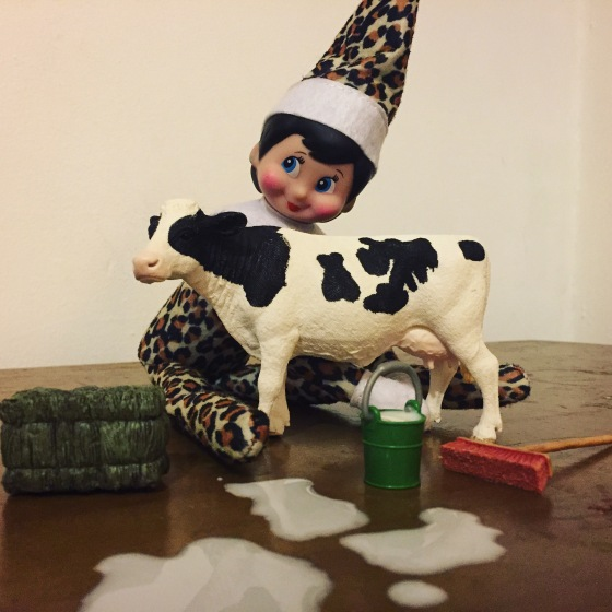 #Elfontheshelf ideas