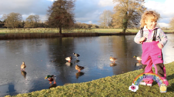 Winter at The Vyne, National Trust