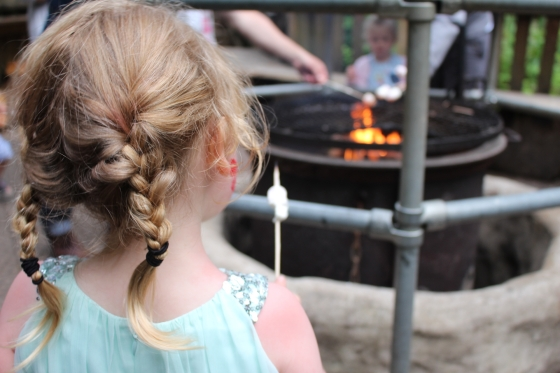 Camp Smokey at Bluestone Review