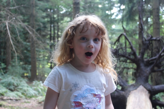 Gruffalo Trail at Bolderwood, New Forest