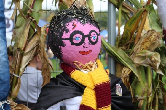 Harry Potter Scarecrow