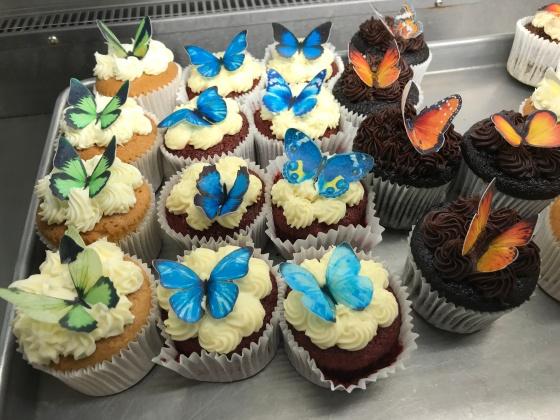 Beautiful Butterflies at RHS Wisley