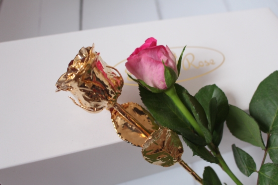 My 24k Gold Eternity Rose