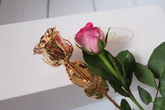My 24k Gold Eternity Rose