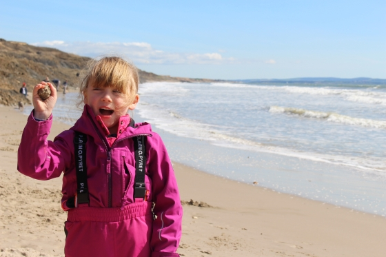 Fossil Hunting at Barton-On-Sea