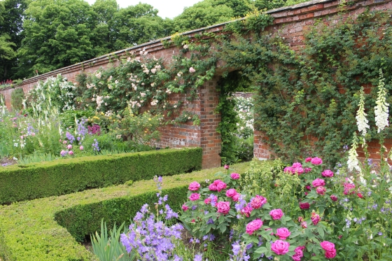 Roses at Mottisfont, Hampshire