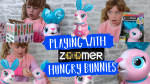 Zoomer hungry bunnies shreddy