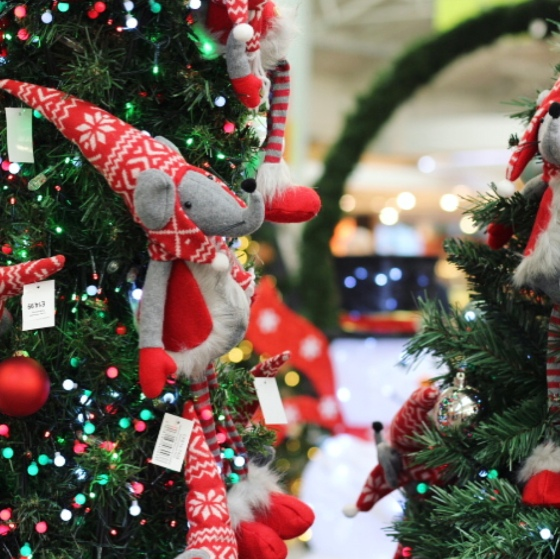 Haskins Garden Centre Christmas 2018
