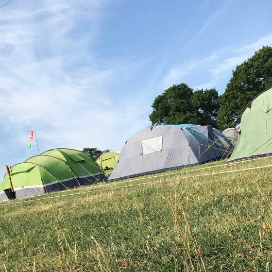 NozStock Review