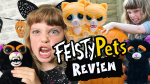 Feisty Pets Cranky Cathy