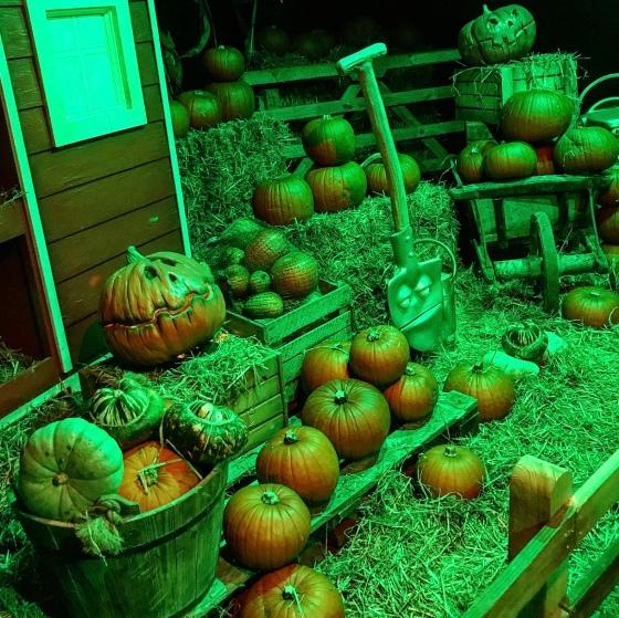 Halloween at Paultons Park 2019