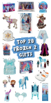Top 20 Frozen 2 Gifts