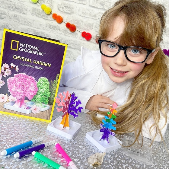 National geographic crystal tree kit review