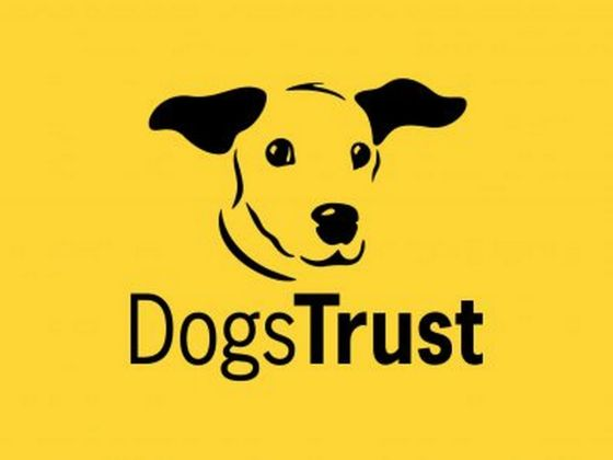 Pound Puppies and Dogs Trust