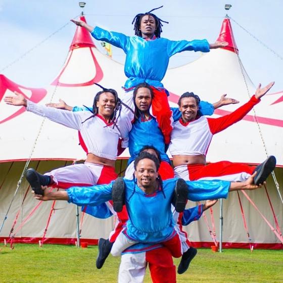 Zippos Circus 2020 Review